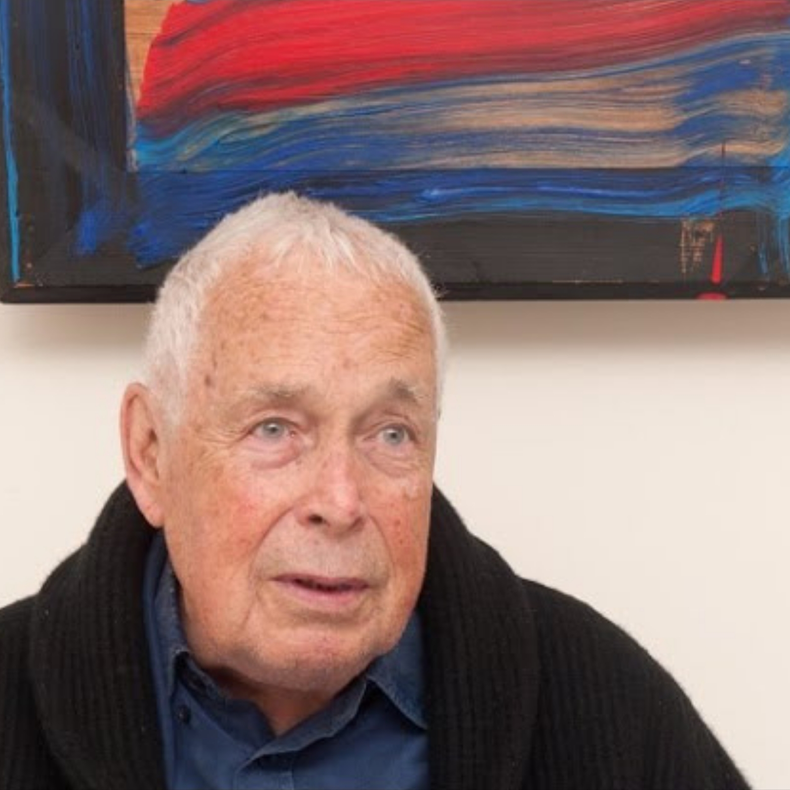 Howard Hodgkin video
