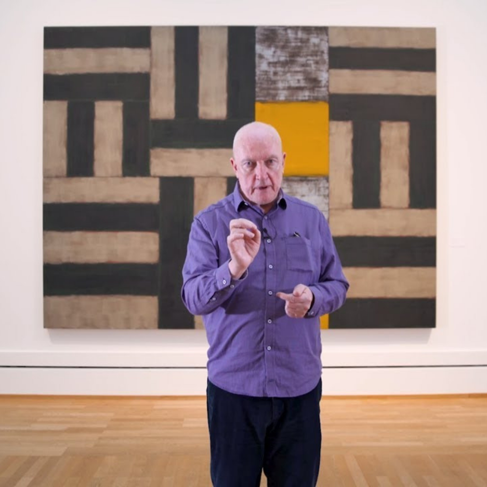 Sean Scully video